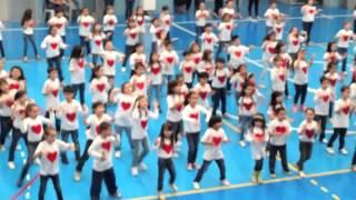 Colégio São José De Vila Matilde: Festa Da Família 2013