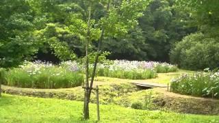 智光山公園のイメージ