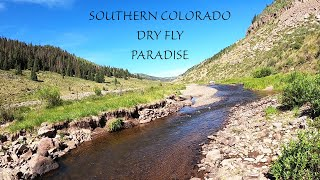 Fly Fishing Southern Colorado - A dry fly paradise