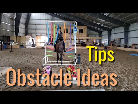 Obstacle ideas and Tips for horse training - YouTube