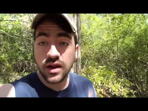 Liberal Redneck - Tennessee State Congress Names Holy Bible the State Book