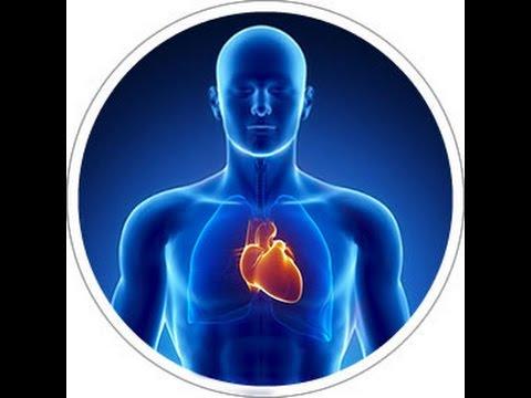 La presión arterial y oxímetro de pulso