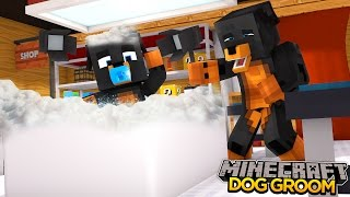 Minecraft - Donut The Dog Adventures -BABY MAX GETS HIS 1ST DOGGY GROOM!!