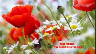 Tanita Tikaram - I Miss You Like The Desert Miss The Rain