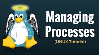 Process Management Commands (fg, bg, top, ps, kill, nice, renice, df, free) Linux Tutorial