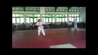 preview picture of video 'Noni Karate Kata O2SN SMA Palu 2015   02'