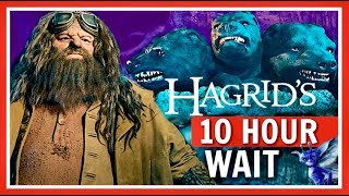 IS THIS RIDE WORTH A 10 HOUR WAIT? Hagrids Magical Creatures Motorbike Adventure