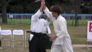 preview picture of video 'Aikido Demo at a Tokyo Garden'