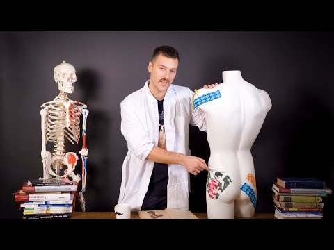 Ćwiczenia na mięśnie pleców leczenie