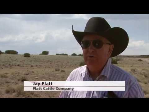 3 minutes with Director Jay Platt on NAFTA