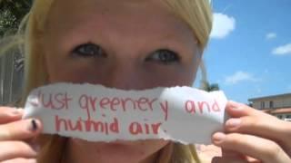 Summer Skin Death Cab For Cutie Lyrics