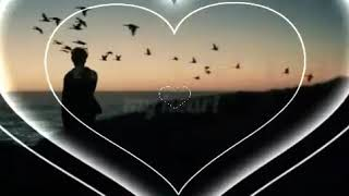I love you - محمد عبده قائد عثمان- Mohamed Abdu