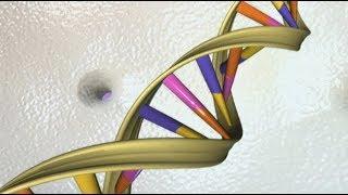 Encoding DNA with computer malware