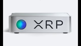 Ripple XRP And The Bakkt Trading Volume Is About To Blow Minds