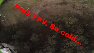 Park flying before sun goes down! | FPV Freestyle
