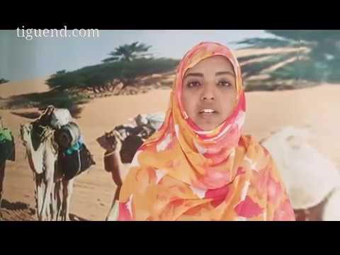 ميلاد جمعية موريتانية تهتم بأدب الطفل – ميمونة أحمد