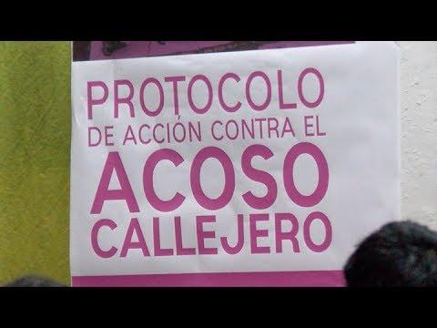 Video: Presentaron un protocolo de acción sobre acoso callejero