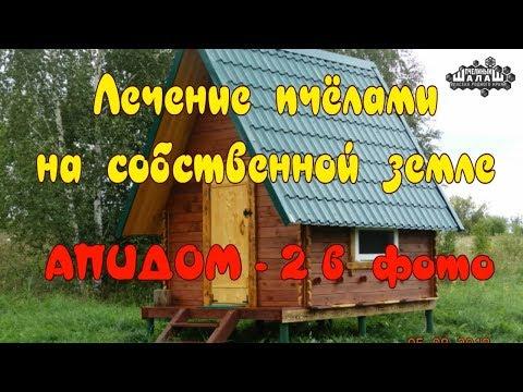 АПИДОМ - 2  В ФОТО.  ЛЕЧЕНИЕ ПЧЁЛАМИ. АПИТЕРАПИЯ.