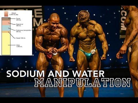 Ressortent les muscles de lépine dorsale