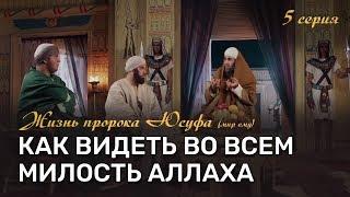 Как видеть во всем милость Аллаха? | История пророка Юсуфа (мир ему) [5-20]