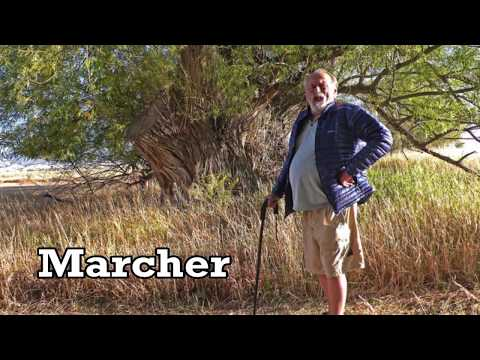 Vidéo de Jim Harrison