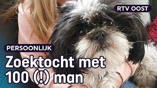 Hondje Puck twee dagen vermist door vuurwerk   RTV Oost