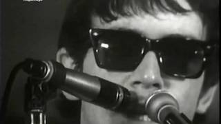The Animals - We Gotta Get Out Of This Place (Live, 1965) ♫♥50 YEARS & counting
