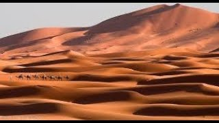 Surprisingly interesting facts about the hottest and hot desert!