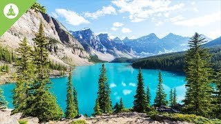 Beautiful Nature, Meditation Music, No Loops, Soothing Experience, Stress Relief