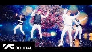WINNER   'MILLIONS' MV