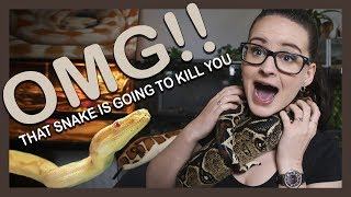 OMG THAT SNAKE IS GOING TO KILL YOU!! (It's really not) by Jossers Jungle