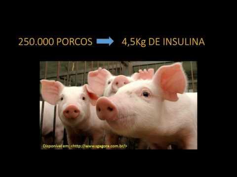 Insulina ingestão a longo