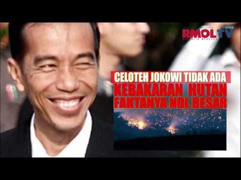 Celoteh Jokowi Tidak Ada Kebakaran Hutan Faktanya Nol Besar