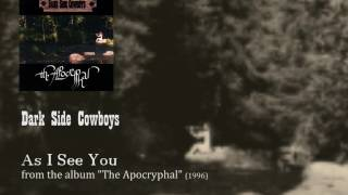 Dark Side Cowboys - As I See You