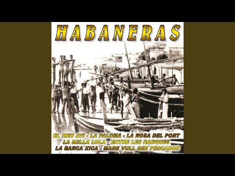 La Paloma Havana Xica Lyrics Song Meanings Videos Full Albums Bios