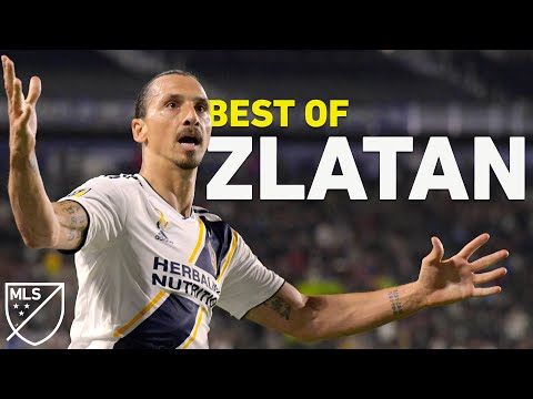 """""""You Wanted Zlatan, I Gave You Zlatan"""" 