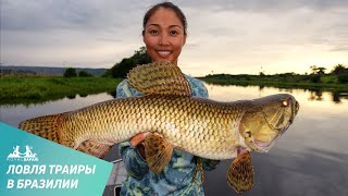 Рыба, которая любит погромче: ловля траиры в Бразилии