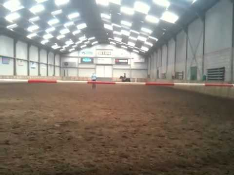Paardrijles in Maashees