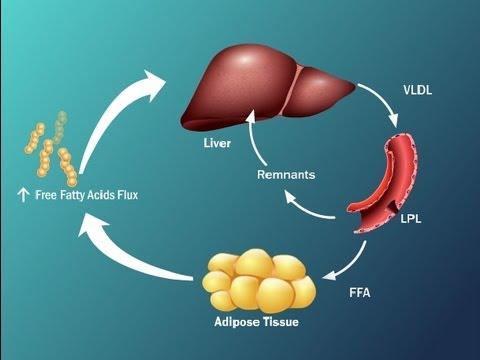 Biureta reakcija pret insulīnu