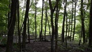 福島県葛尾村もりもりランド風景動画