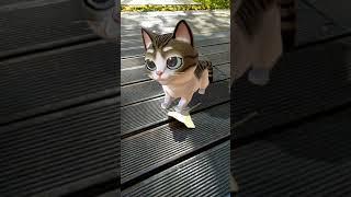 Meow! - AR Cat