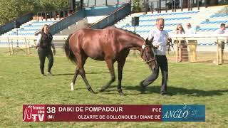 Video  de DAIKI DE POMPADOUR #1