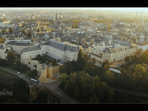 DIscover what Koreans Living and Working in Luxembourg have to say
