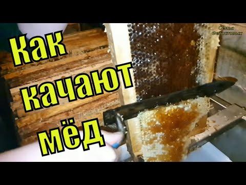 Как качаем мёд. Почему мёд густой / Семья Фетистовых