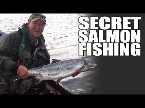 Secret Salmon Fishing