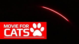 MOVIE FOR CATS - REALISTIC LASER TOY (ENTERTAINMENT VIDEOS FOR CATS TO WATCH)