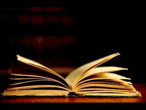 Trecho 7 do livro: CONTATO - As vidas de Sophie