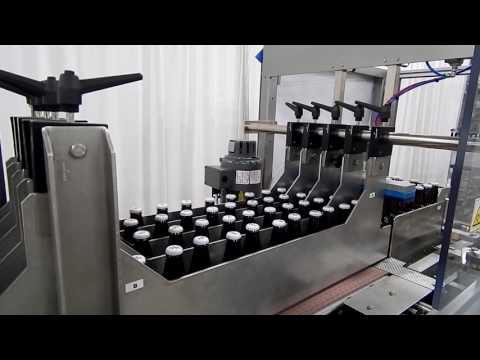 Brewery Bottle Case Packing Line