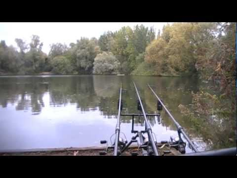 The Local Pond Part 6 – Autumn – Carp Fishing