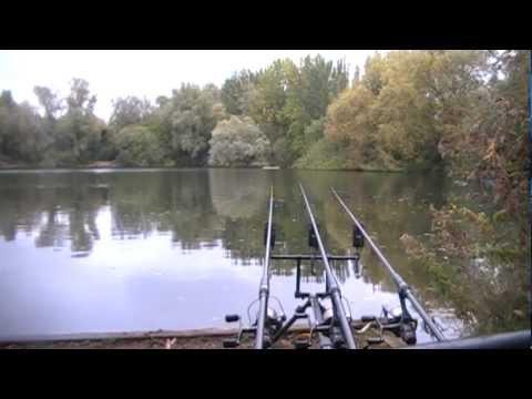 The Local Pond Part 6 – Autumn – Carp Fishing
